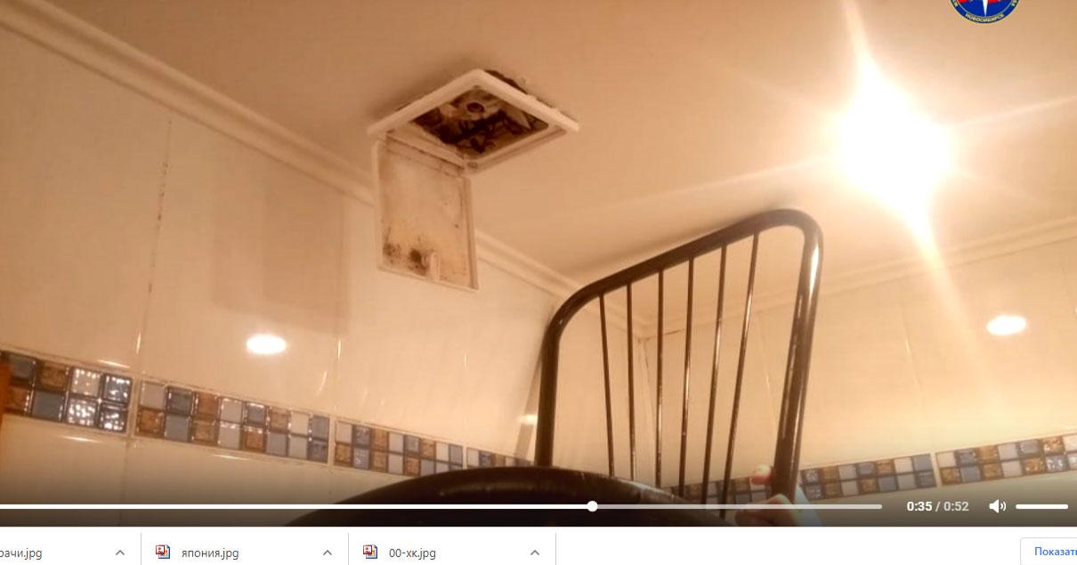 В Новосибирске спасатели освободили кошку, застрявшую на потолке