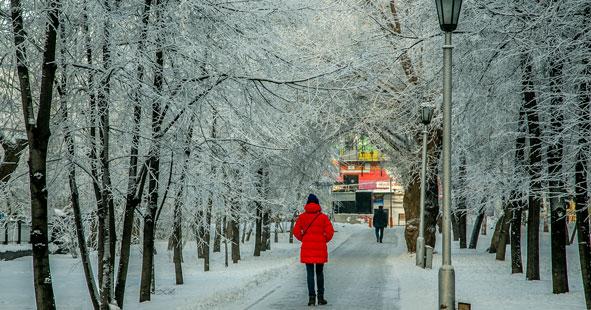 Чудесная зимняя погода ожидает жителей Новосибирской области в выходные