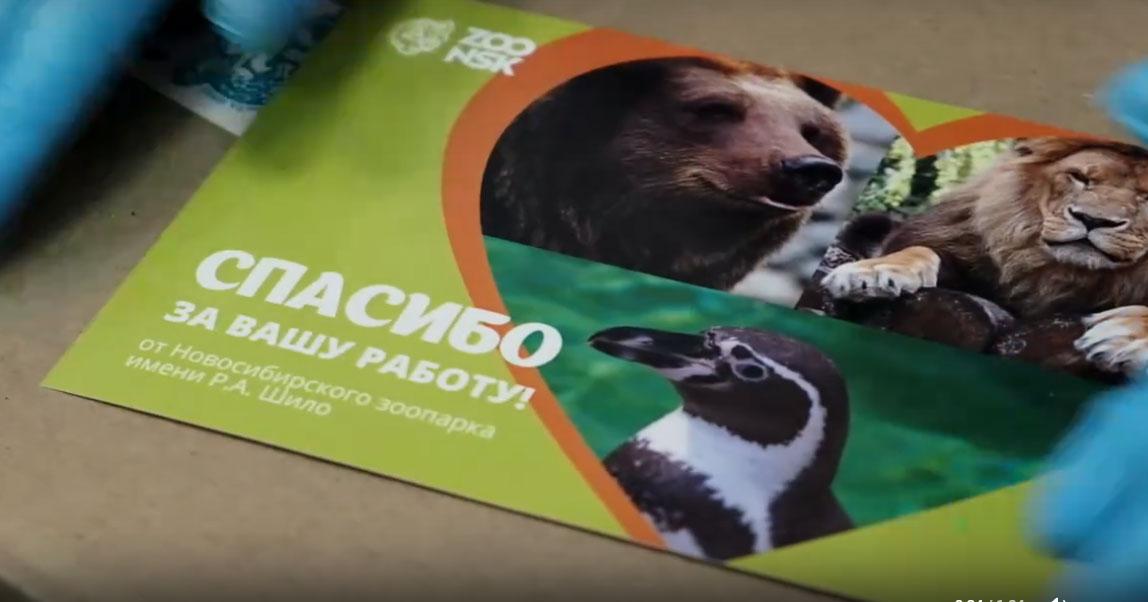 Новосибирский зоопарк поблагодарил медиков, которые борются с коронавирусом