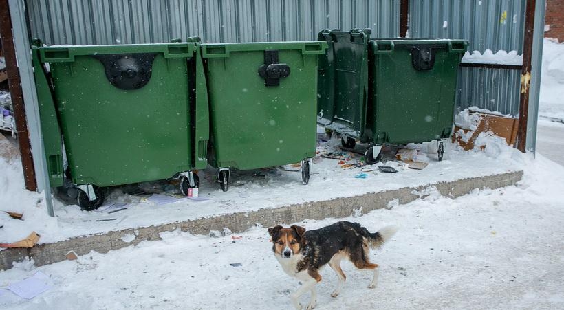 Спикер новосибирского заксобрания: проблему тарифов на вывоз мусора надо решать без ажиотажа