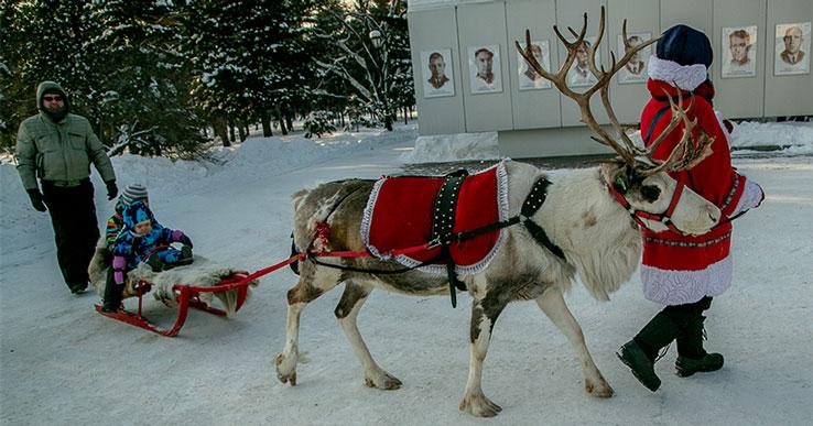 Морозная погода на несколько дней уходит из Новосибирской области