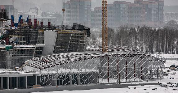 Учёные помогут Новосибирску подготовиться к молодёжному чемпионату мира по хоккею