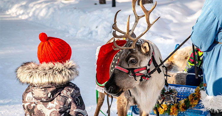 Жителей Новосибирска пригласили на Снежный фестиваль в Саппоро