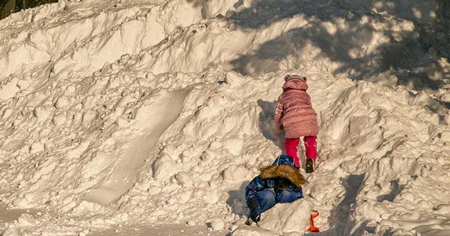 Министерство образования Новосибирской области взяло на контроль ситуацию с избиением ребёнка