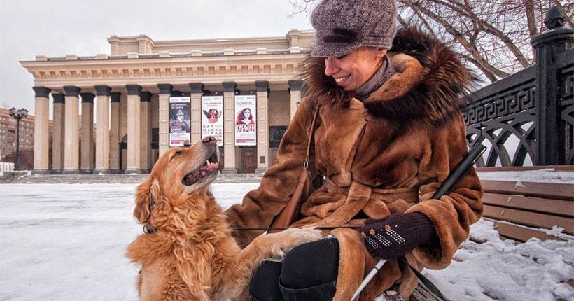 Незрячей жительнице Новосибирска устроили квест в ветклинике из-за справки для собаки-поводыря