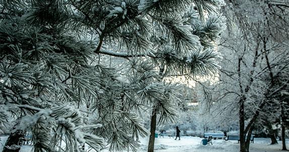 В Новосибирской области в ближайшие сутки резко похолодает