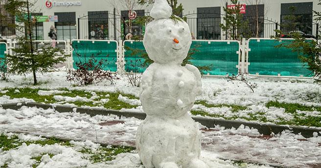 Пожалел снеговика: в Новосибирске следователи проводят проверку по факту избиения детей мужчиной