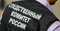 В Новосибирске школьный охранник избил ребёнка: инициирована проверка