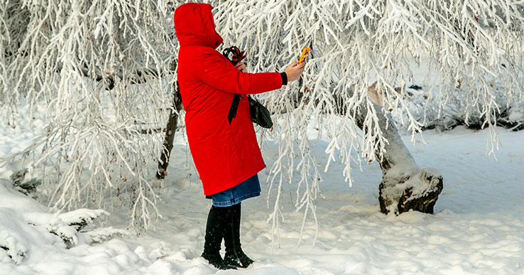 В последние свои дни зима подарит жителям Новосибирской области сильнейшие морозы