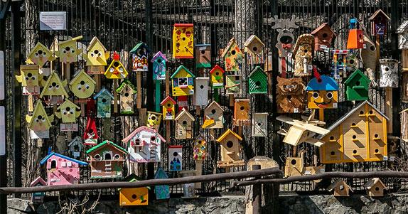 Новосибирский зоопарк пригласил к участию в традиционном конкурсе «Дворец для скворца»