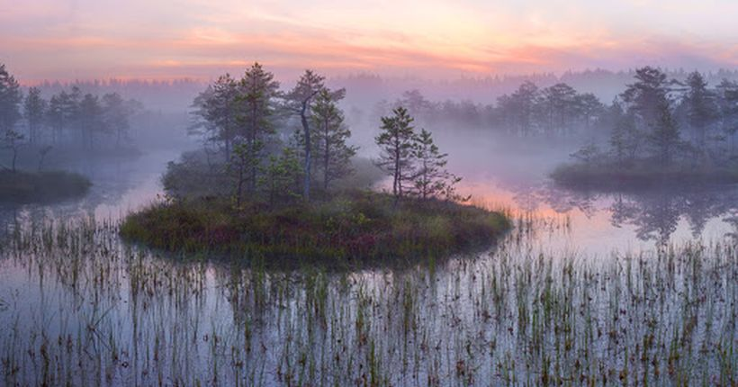 Новосибирские депутаты поддержат изменения в Водный кодекс