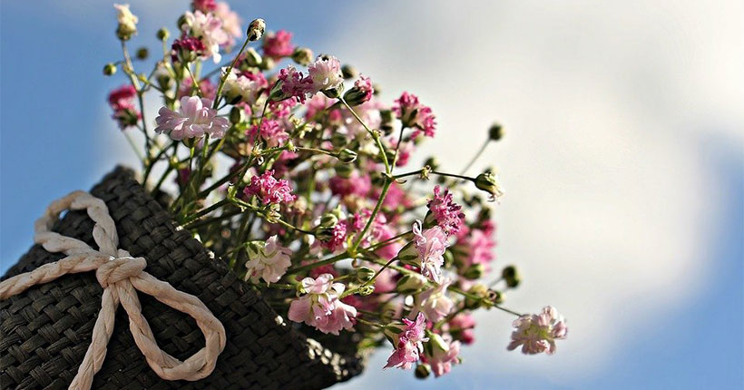 Как выбрать и сохранить живые цветы, накануне 8 марта рассказали жителям Новосибирской области