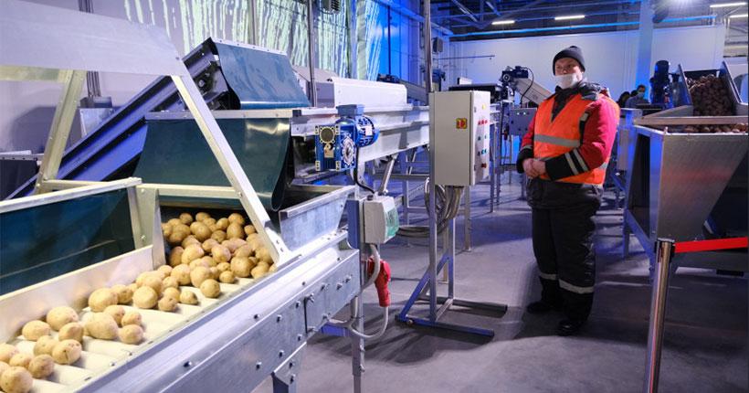 В Новосибирске открылся оптово-распределительный центр «РусАгроМаркет»