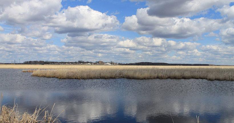Новосибирская область получит федеральные средства на расчистку реки Баган