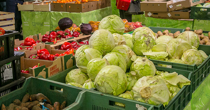 В Новосибирскую область не пустили 80 тонн потенциально опасных овощей