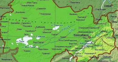В Новосибирской области зарегистрировали первое обращение с покусом клеща