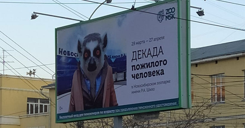 В Новосибирске к Декаде пожилого человека появились баннеры с лемуром-старичком в пиджачке