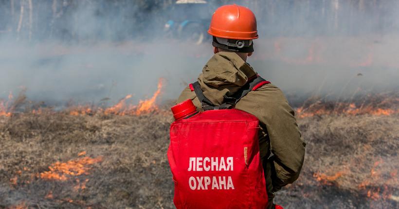 Глава МЧС по Новосибирской области призвал жителей не сжигать сухую траву