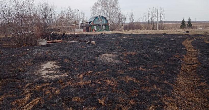 В Новосибирской области ежедневно происходит около двухсот пожаров