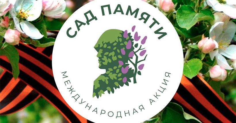 В Новосибирской области начали высаживать деревья в память о погибших воинах