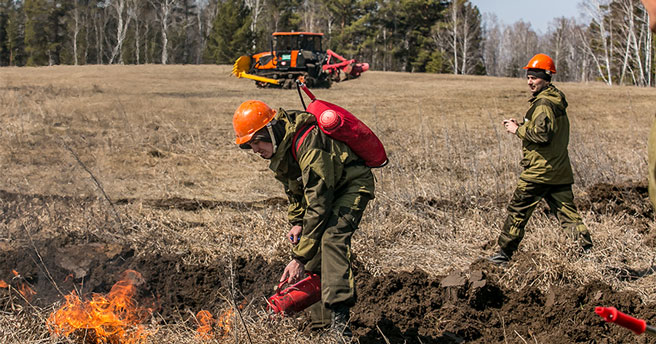 В Новосибирской области продляют действие особого противопожарного режима
