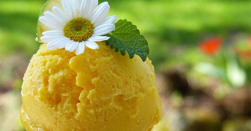 Новосибирцев пригласили обменять батерейки и платиковые крышечки на мороженое и конфеты