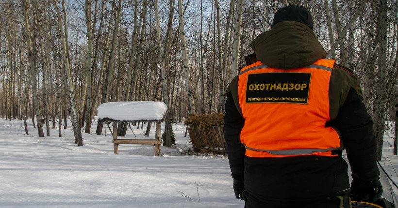 Депутаты заксобрания попросили губернатора Новосибирской области увеличить финансирование защитникам животного мира