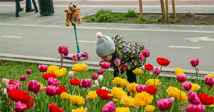 Ночные заморозки и дневная жара: синоптики рассказали о погоде в Новосибирской области