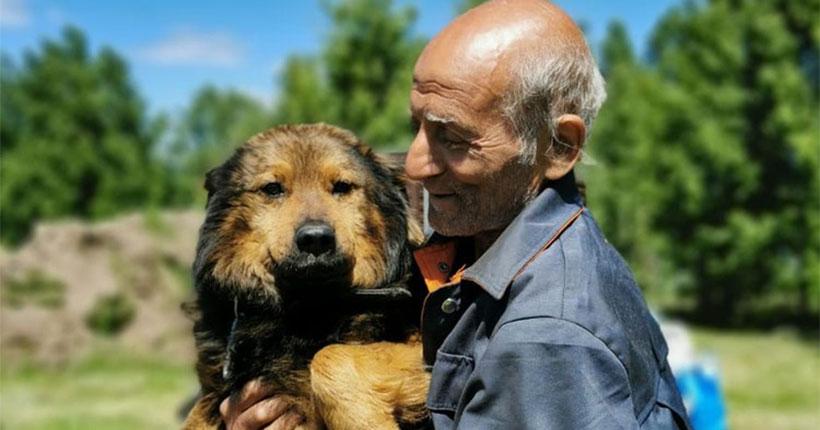 Как новосибирские волонтёры спасли магаданского пенсионера с семью собаками