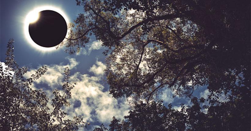 Новосибирцев пригласили 10 июня посмотреть солнечное затмение онлайн