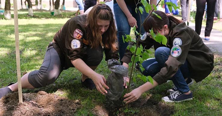Сотни тысяч деревьев высадили новосибирцы в рамках акции «Сад памяти»