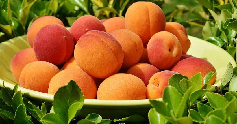 В Новосибирскую область не пустили 58 тонн опасных персиков и лука
