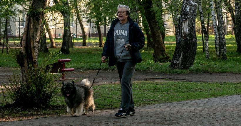Заставят ли жителей Новосибирской области чипировать домашних животных?