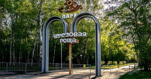 Аллея роз появится в одном из парков отдыха в Новосибирске