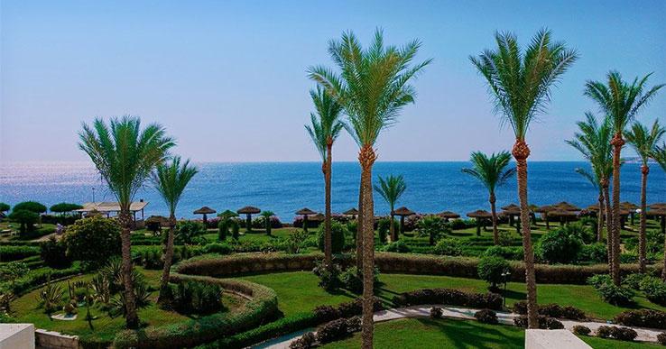 Новосибирцы смогут летать на египетские курорты прямыми рейсами