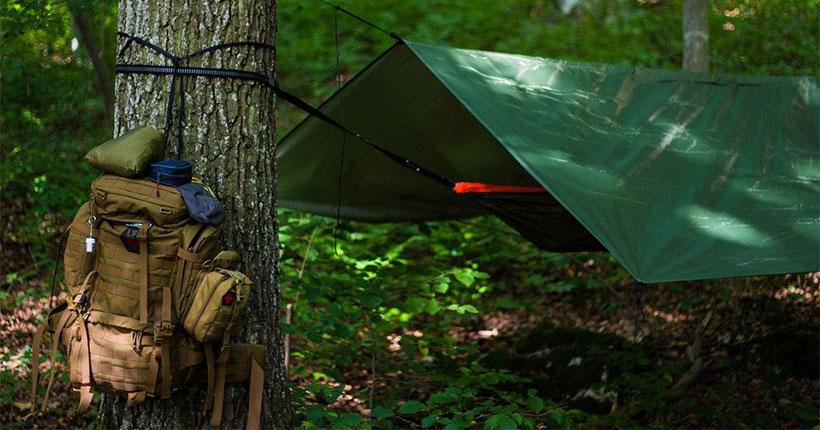 Приняты решения по инциденту со стрельбой в детском палаточном лагере