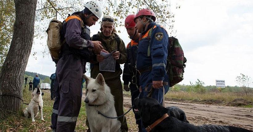 Семейную пару заблудившихся грибников целый день искали в лесу под Новосибирском