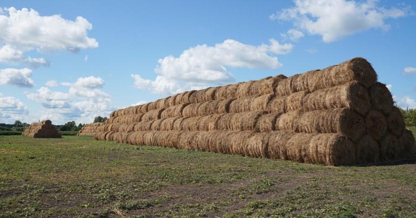 Новосибирские аграрии наверстали темпы заготовки кормов